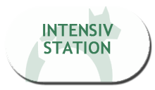 5 Intensivstation